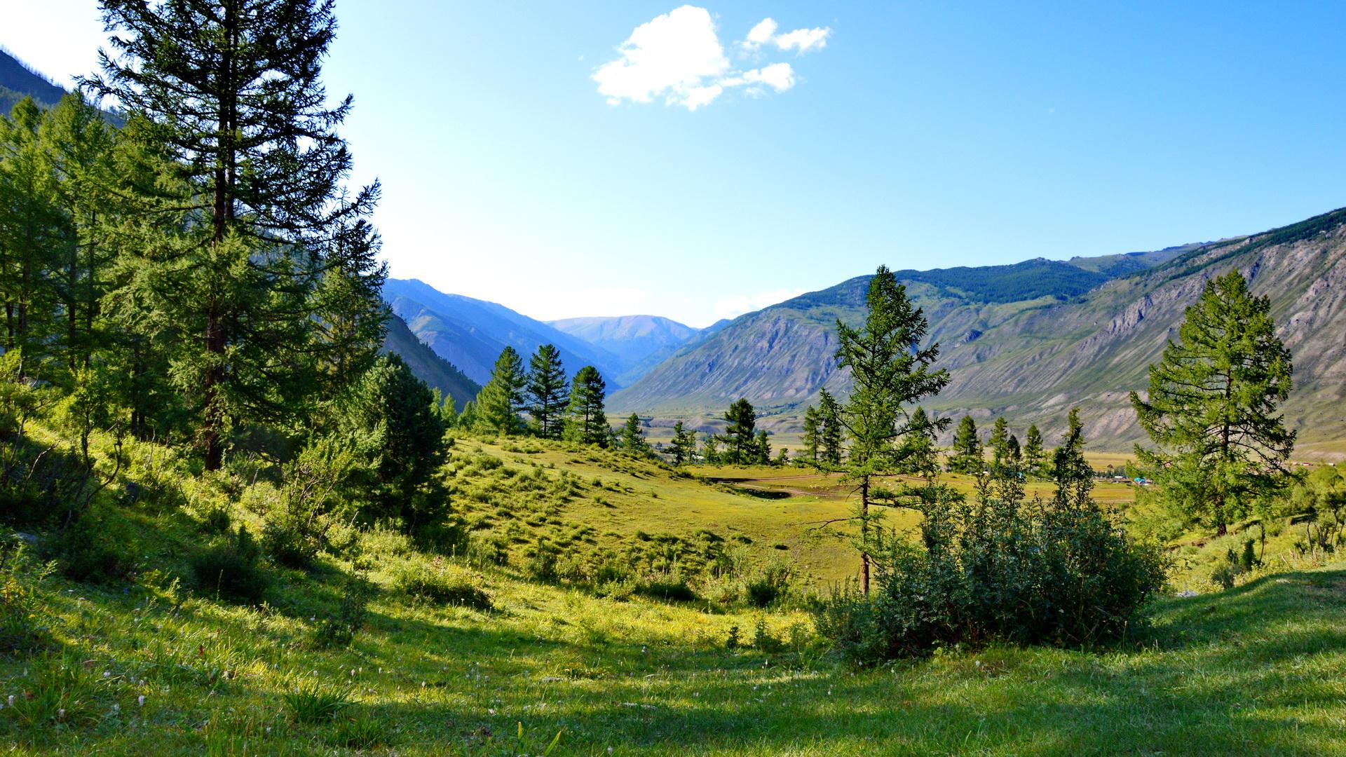 Чибитская поляна.