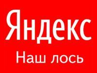 Что делать, если серп Яндекса снится ночами?